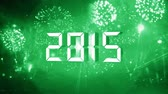 party : new year 2015