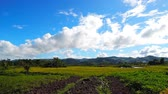 proximidade : A time lapse clip of rice fields at the Canlaon Volcano skirts. It shows the motion of cumulus clouds at close proximity to the ground. Smoke coming from distant native houses can also be seen in the footage. Stock Footage