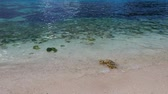порошкообразный : A close up video of coral white sand and crystal clear ocean water.