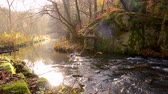 enevoado : waterfall in misty autumn forest at sunset, Harz National Park, Germany