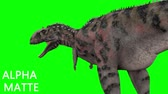 t rex : Dinosaur animation on green screen. GI render, realistic motion Stock Footage