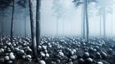 apokalipsa : Scary old skulls in fog night forest. Fear and horror. Mistic and apocalypse concept. Realistic 4K animation.