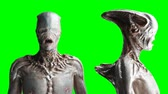 canavar : Scary, horror monster. Fear concept. Green screen isolate. Realistic 4K animation.