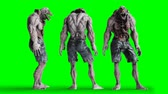 pençeleri : Scary, horror monster. Fear concept. Green screen isolate. Realistic 4K animation.