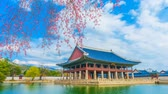 누각 : Pavilion in the park,cherry blossom in Seoul,South Korea