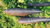 Aerial shot of three whales rock in Phu Sing Country park in Bungkarn, Thailand Wideo
