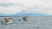 Патагония : Boats in Admiral Montt Gulf, Puerto Natales, Ultima Esperanza Province, Patagonia, Chile