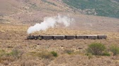 retro revival : Old Patagonian Express La Trochita, steam train, Chubut Province, Patagonia, Argentina Stock Footage
