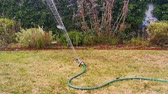 watering the grass lawn with an automatic garden sprayer, close up of a water sprinkler, spraying water in the backyard