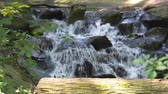 libra : streaming water over rocks in closeup, beautiful garden architecture, nature background or a tiny waterfall