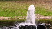 заподлицо : garden and park decoration, water fountain spraying a big beam or water