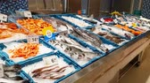устрица : Blanes, Spain - 29 may, 2018: Assortment of fresh fish and seafood on the counter of a grocery store in Blanes. Chilled seafood delicacies are in containers with ice. Costa Brava, Catalonia, Spain