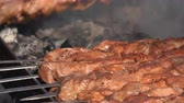 Appetizing juicy pork shish kebabs cooking on metal skewers on charcoal outdoors grill with fire smoke. Close-up view, selective focus on tasty pieces of meat Stock Footage