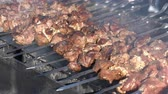 Appetizing juicy pork shish kebabs cooking on metal skewers on charcoal grill with smoke. Close-up view, selective focus on tasty pieces of meat. Stock Footage