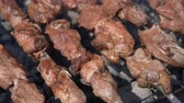rôti de porc : Tasty juicy pork barbecue cooking on metal skewers on charcoal outdoors grill with fragrant fire smoke. Cooking during summer picnic. Close-up view, selective focus on pieces of delicious roast meat Vidéos Libres De Droits