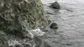 Close-up view of rocky coast and sea waves. Crystal clear water Pacific Ocean waves beat against rocky shore at high tide. Concept: clear water of World Ocean, environmental pollution, ecological nature. Dostupné videozáznamy