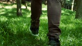 Slow Motion footage of man and walks on nature way in forest in spring or summer seasonal.