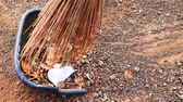 süpürge : Sweep dry leaves and garbage in the yard with a broom made from coconut leaf stalks. Stok Video