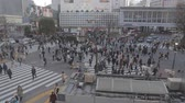 TOKYO,JAPAN - CIRCA March 2015 :Wide Aerial - Shibuya road crossing before sunset