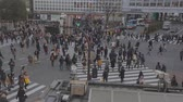 TOKYO,JAPAN - CIRCA March 2015 :Aerial - Shibuya road crossing before sunset