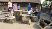 pet friendly : Czech Republic, Prague 16, June 2017: Children play with animals in the zoo