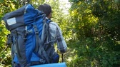 appalachian : Concept of hiking and tourism. A man is walking along a summer forest Stock Footage