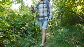 radial : Concept of hiking and tourism. A man is walking along a summer forest Stock Footage