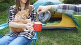 Young Happy couple with cat sitting in tent during hiking trip Dostupné videozáznamy