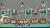 cargo container : ELIZABETH, NJ - JUNE 21: (Time-lapse) Container cranes move into position to begin unloading a Maersk container ship at the A.P. Moller-Maersk facility in the Port Newark-Elizabeth Marine Terminal on June 21, 2013 in Elizabeth, New Jersey.