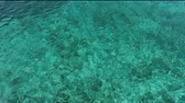 yeşil arka plan : ocean close up from croatia Stok Video