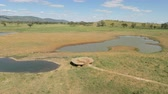 savana : savanna landscape with water hole