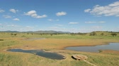 sawanna : savanna landscape with water hole
