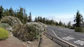 Scenic volcanic landscape at teide volcano on tenerife island Wideo