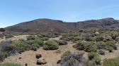 sarma : Scenic volcanic landscape at teide volcano on tenerife island Stok Video