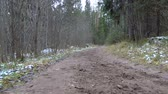 sendero : Shooting of frozen dirt in the forest