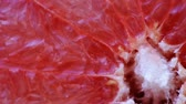 grejpfrut : Fresh rotating slice of grapefruit