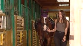 tényleges : Girl takes the horse out of the stable Stock mozgókép