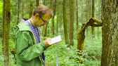 investigare : The ecologist in a forest measuring a tree trunk Filmati Stock