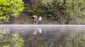 環境保全 : Two ecologist getting soil samples from the bottom of the lake 動画素材