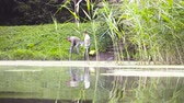 科学者 : Two ecologist getting soil samples from the bottom of the lake 動画素材