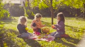 torten : Picnic in the garden. Children sitting on grass and drinking compot Videos