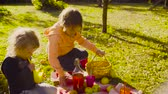 mand : Picnic in the garden. Children sitting on grass and drinking compot Stockvideo