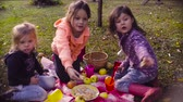zussen : Picnic in the garden. Children sitting on grass, drinking compote and eating pie Stockvideo