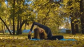 fazendo : Young attractive woman doing yoga exersices in the park