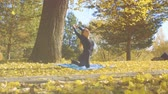 stretches : Young attractive woman doing yoga exersices in the park