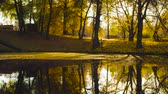 Autumn, lake in the park, colorful trees reflected in the water