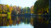 Autumn landscape, lake in the park, colorful leaves on trees Filmati Stock