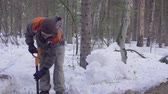 lopata : Ecologist in the forest digging a soil slit