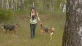vagabundo : Two women volunteer walking with a dogs Archivo de Video