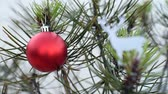 önemsiz şey : Close up of christmas pine tree with red bauble ornament and snow background. Outdoor holiday in winter season landscape loop scene. Stok Video